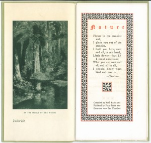 """Title page of """"Nature"""""""