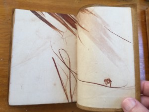 Endpapers with embedded tree bark